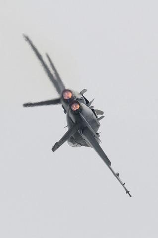 2010年 米海兵隊 岩国基地フレンドシップデー F/A-18Fフライトデモ