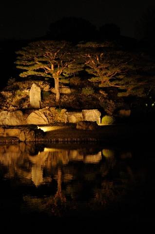 六義園 日本庭園ライトアップ